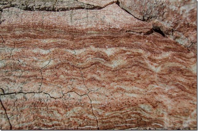 Alabaster at Gilgal 400 Road Grand Staircase-Escalante National Monument Utah