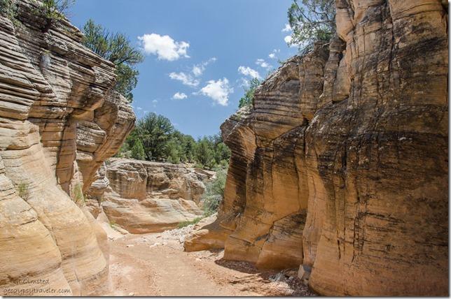 Willis Creek Skutumpah Road Grand Staircase-Escalante National Monument Utah