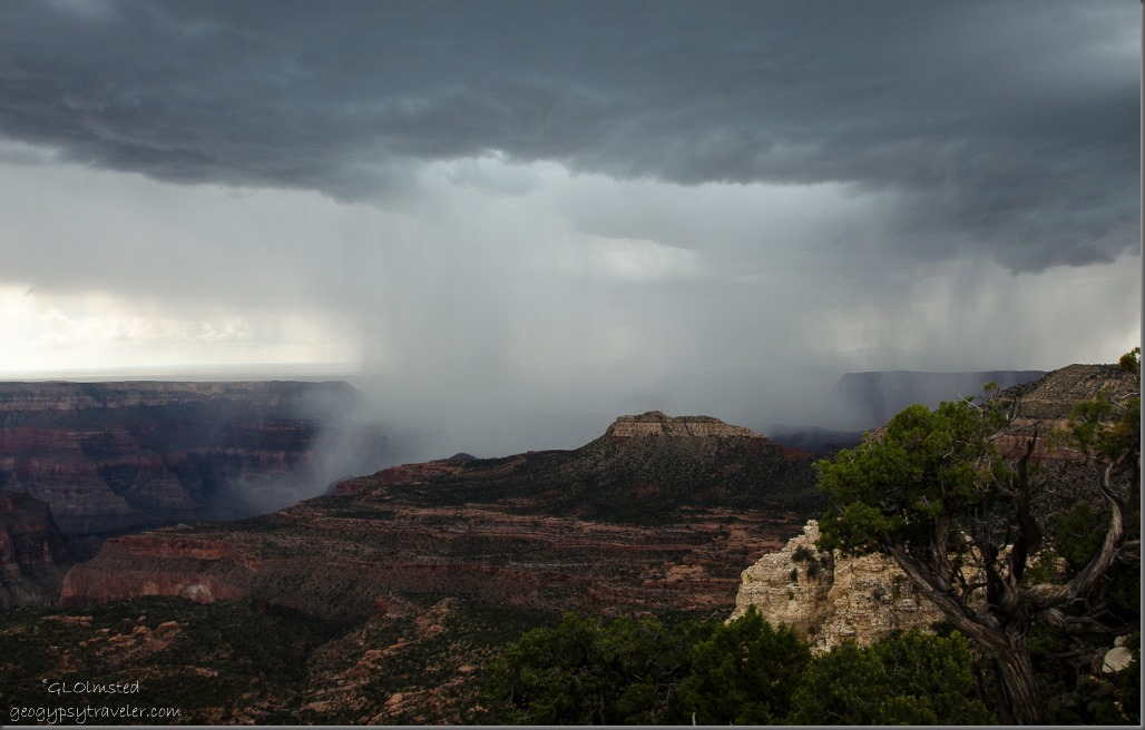 Storm over canyon Crazy Jug Point Kaibab National Forest Arizona