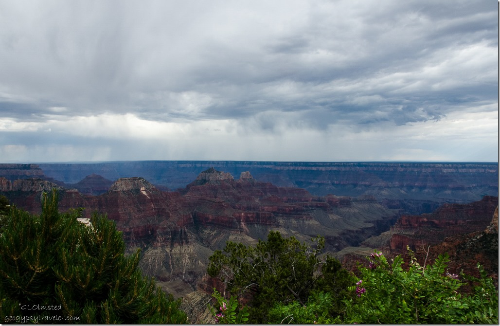 Stormy sky over canyon North Rim Grand Canyon National Park Arizona