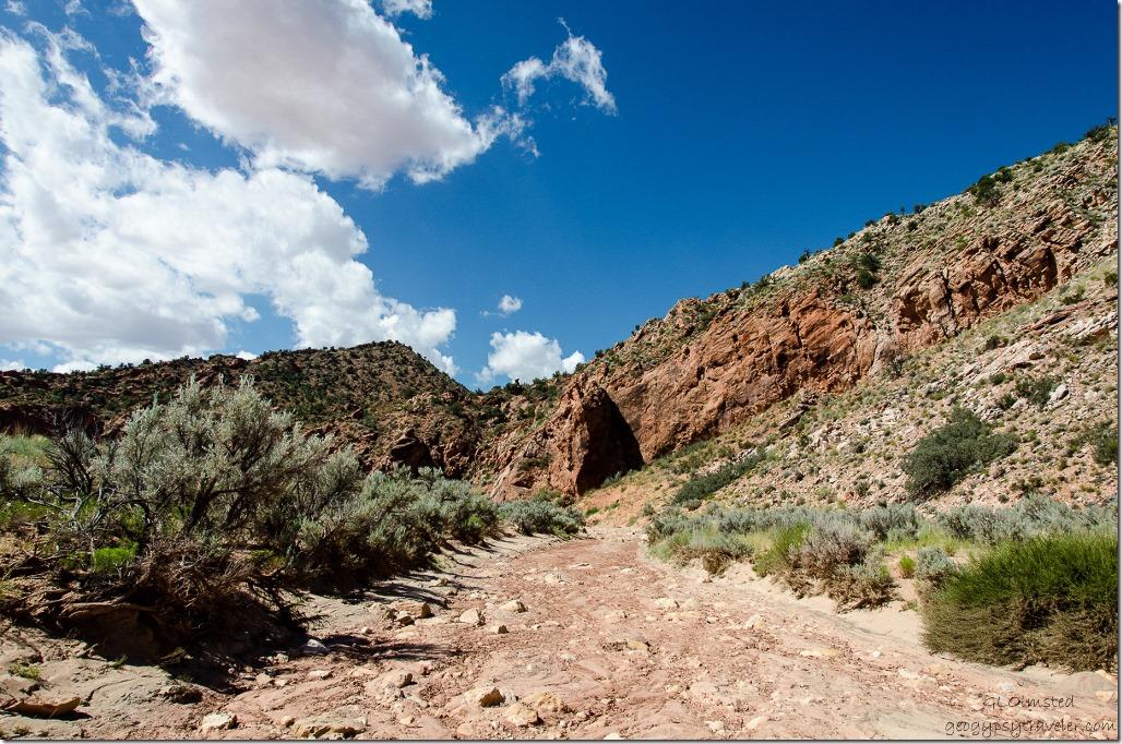 Upper Buckskin Gulch Paria Canyon/Vermilion Cliffs Wilderness area Utah