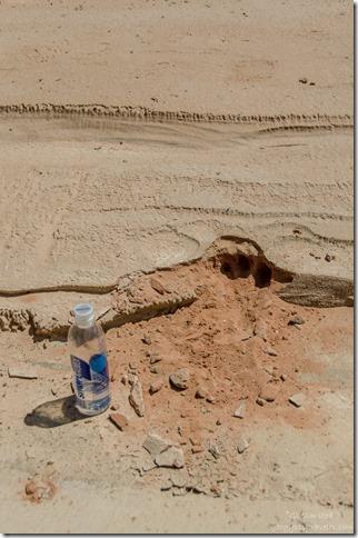 Possible cat track Upper Buckskin Gulch Paria Canyon/Vermilion Cliffs Wilderness area Utah