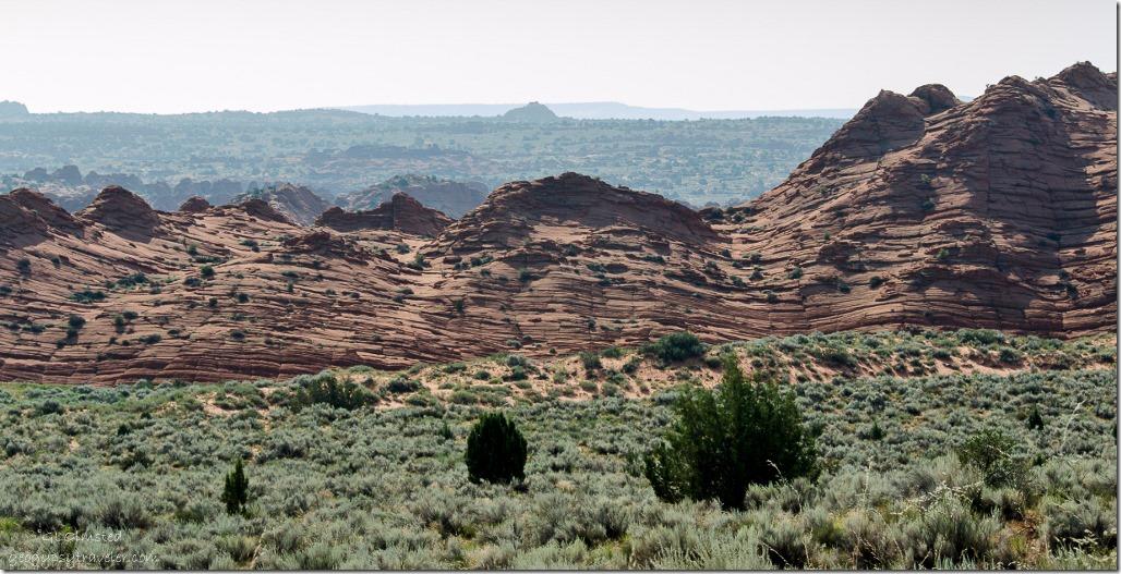 Small saddle Coyote Buttes trail Paria Canyon-Vermilion Cliffs Wilderness Utah