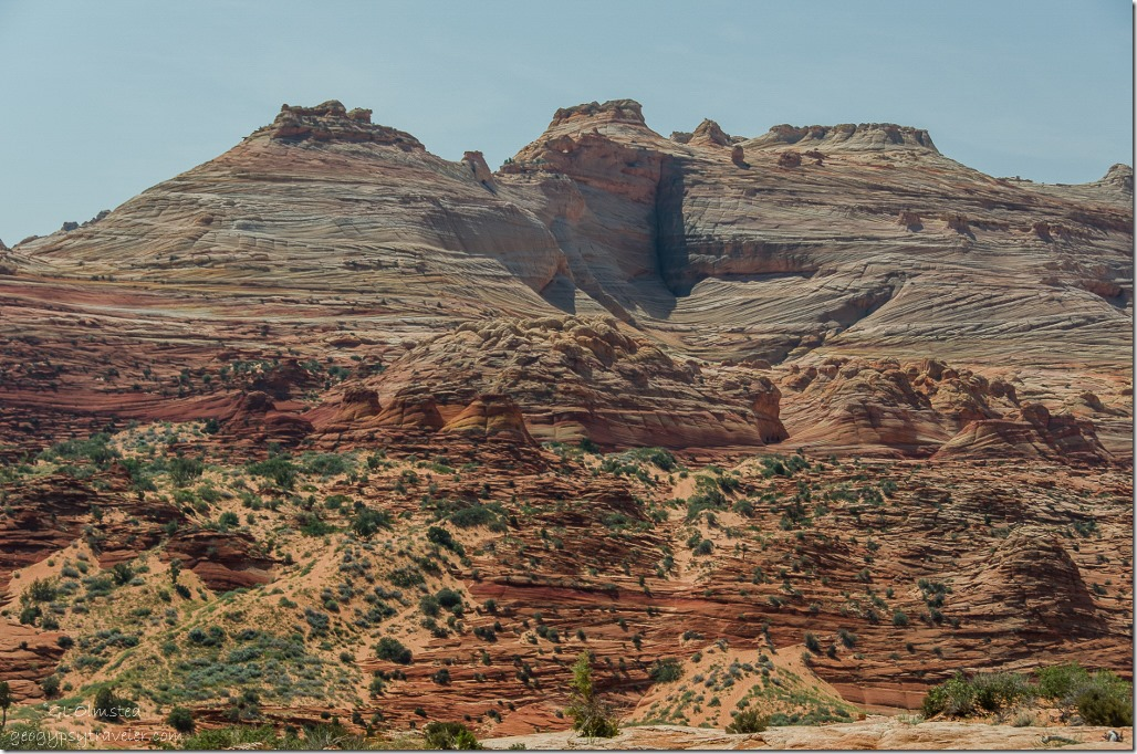 Vertical crevice above The Wave Coyote Buttes trail Paria Canyon-Vermilion Cliffs Wilderness Arizona