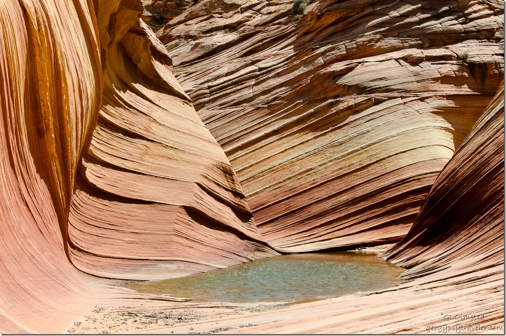 Pool below The Wave Paria Canyon-Vermilion Cliffs Wilderness Arizona