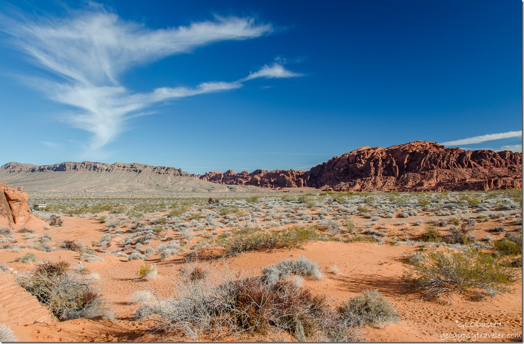 View from Atlatl Rock Valley of Fire State Park Nevada