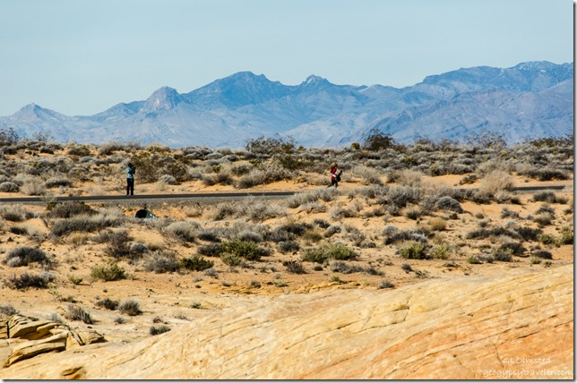 Skateboarder Road Valley of Fire State Park Nevada