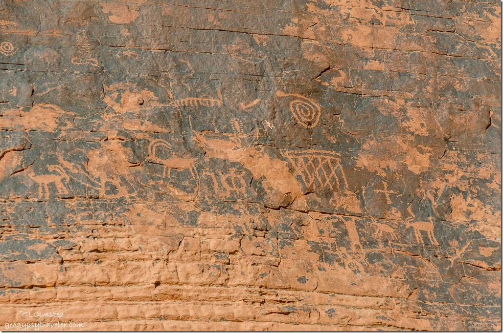 Petroglyphs by Atlatl Rock Valley of Fire State Park Nevada