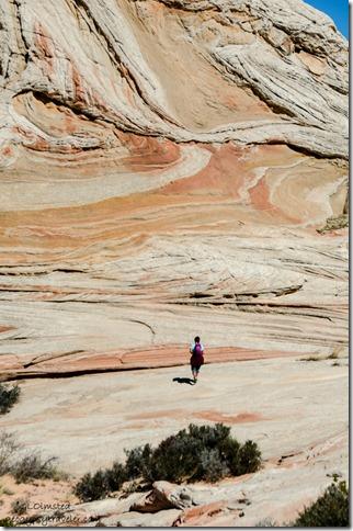 Pam White Pocket Vermilion Cliffs National Monument Arizona