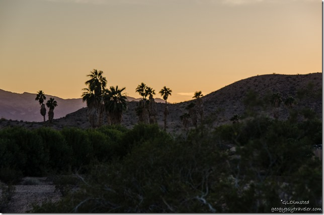 Sunset Callville campground Lake Mead National Recreation Area Nevada