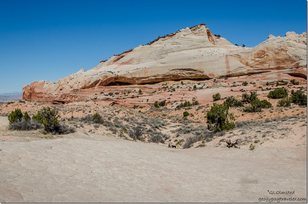 Alcove White Pocket Vermilion Cliffs National Monument Arizona