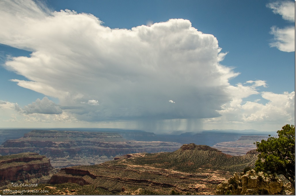 Stormy view West Crazy Jug Point Kaibab National Forest Arizona