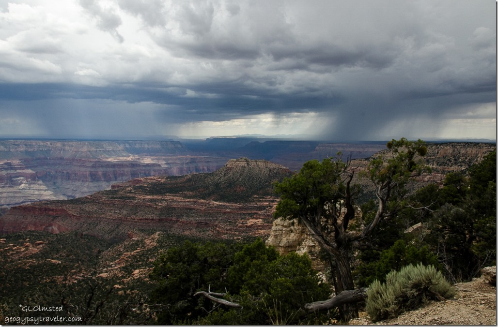 Stormy view West Crazy Jug Pt Kaibab National Forest Arizona