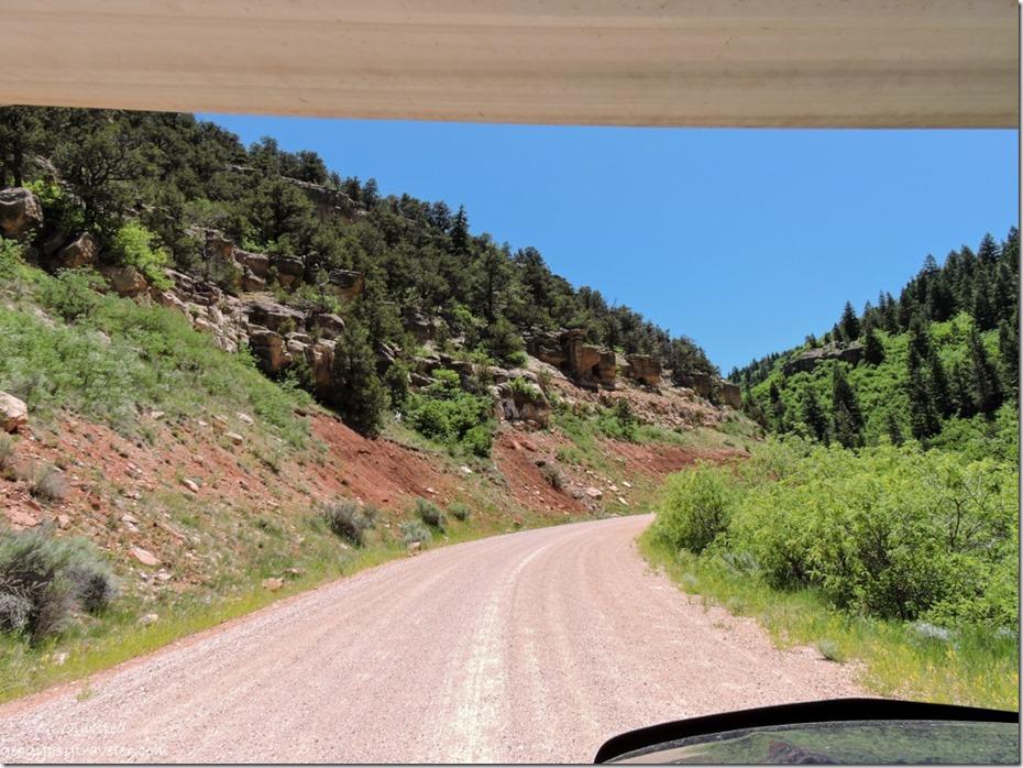 FR Kaibab National Forest Arizona