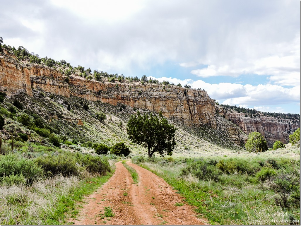 FR642 North Snake Gulch Kaibab National Forest Arizona