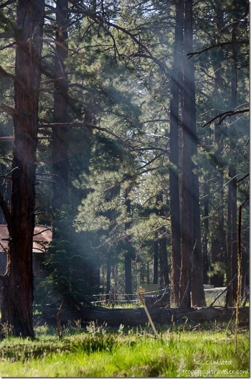 Light rays through smoke from RV North Rim Grand Canyon National Park Arizona