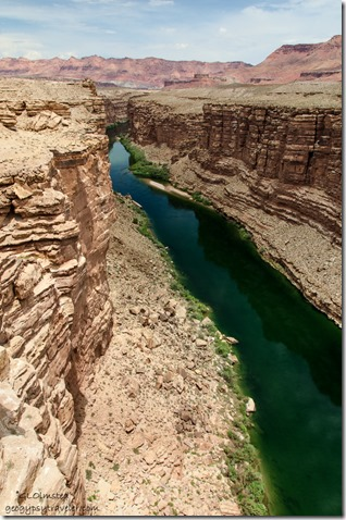 Colorado River from Navajo Bridge Marble Canyon Arizona