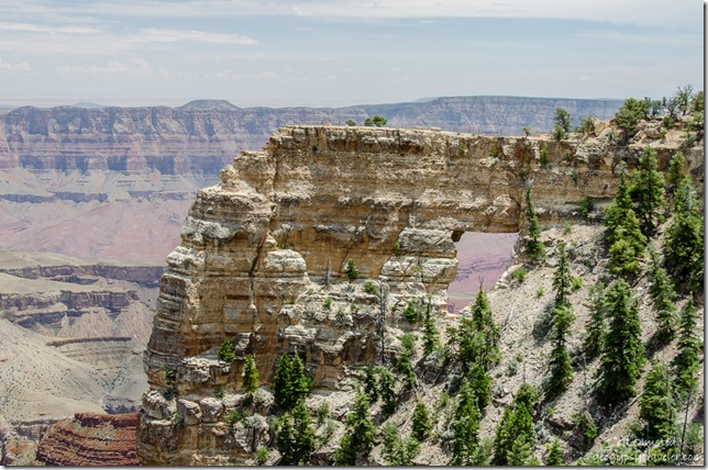 Colorado River through Angels Window Cape Royal North Rim Grand Canyon National Park Arizona