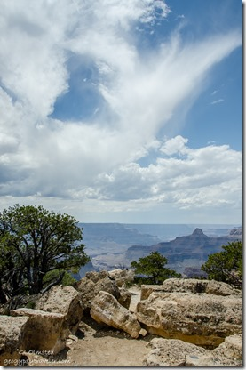 View West Cape Royal North Rim Grand Canyon National Park Arizona