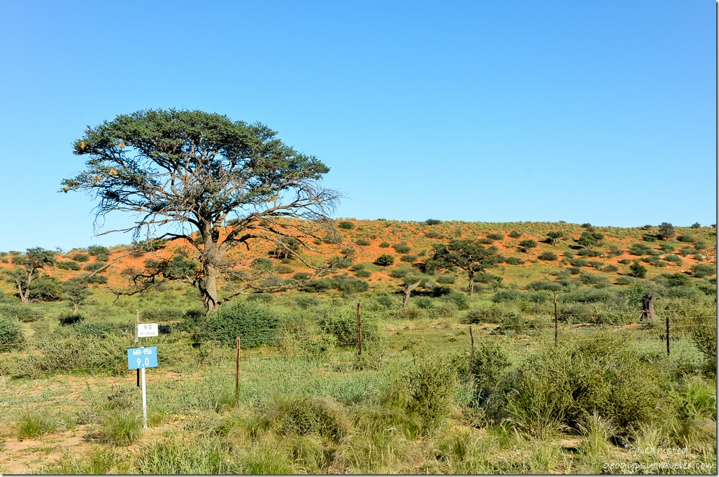 R360 North to Kgalagadi Transfrontier Park South Africa