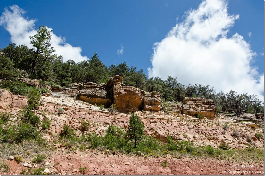 Rock outcrop along FR246 Kaibab National Forest Arizona