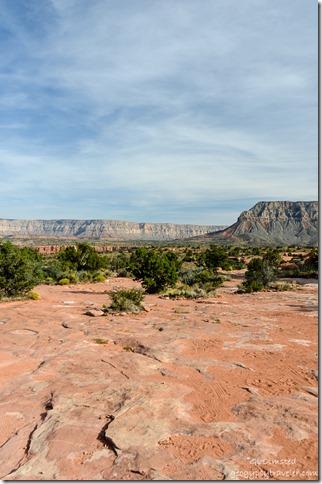 View Southeast from camp area Toroweap Grand Canyon National Park Arizona