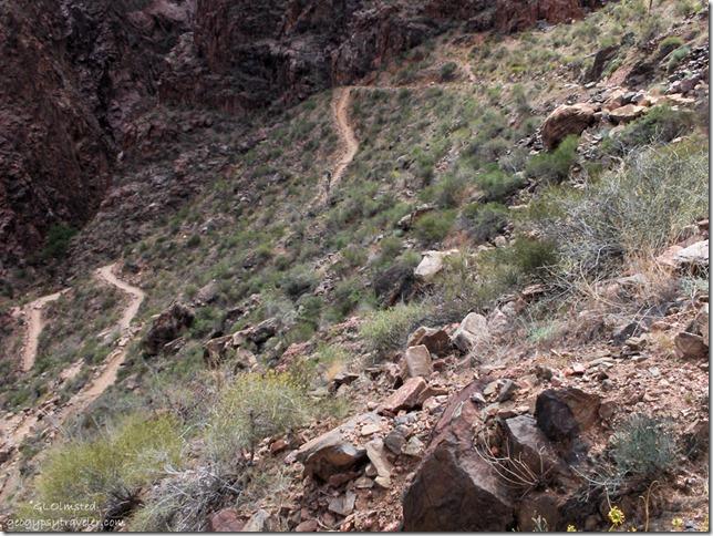 Devils corkscrew Bright Angel trail Grand Canyon National Park Arizona