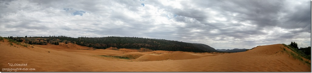 a915lerw Coral Pink Sand Dunes State Park Utah