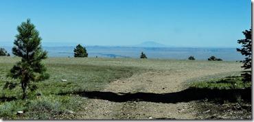 Marble View Kaibab Kaibab National Forest Arizona