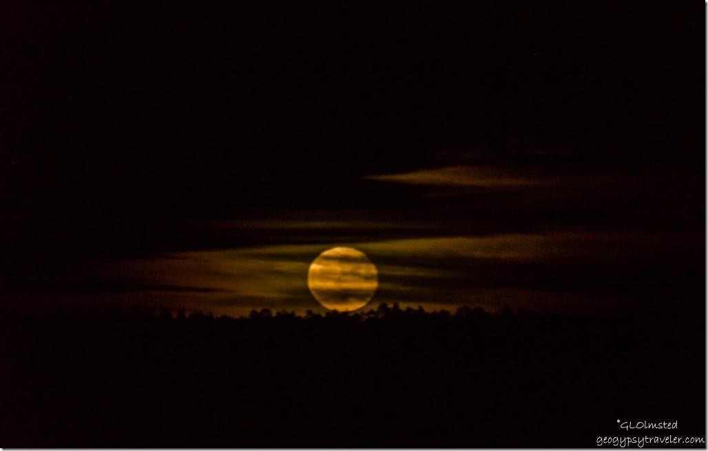 Hunter moon with clouds North Rim Grand Canyon National Park Arizona