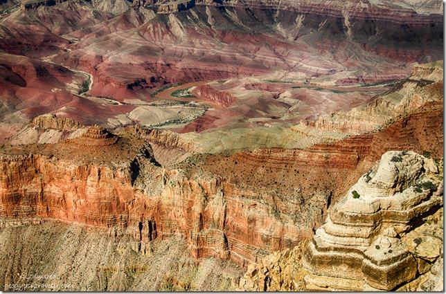 Colorado River from Lippan Point South Rim Grand Canyon National Park Arizona