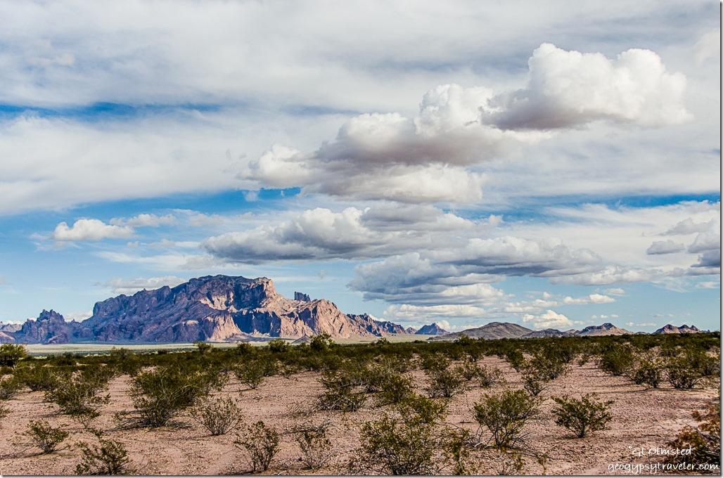 KOFA Mountains Palm Canyon Road BLM Arizona
