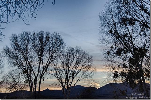 Sunset through trees from RV Kirkland Arizona