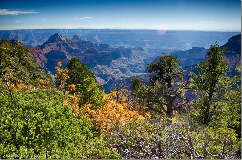 Fall North Rim Grand Canyon National Park Arizona
