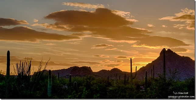 Sunset Darby Well Road BLM Ajo Arizona