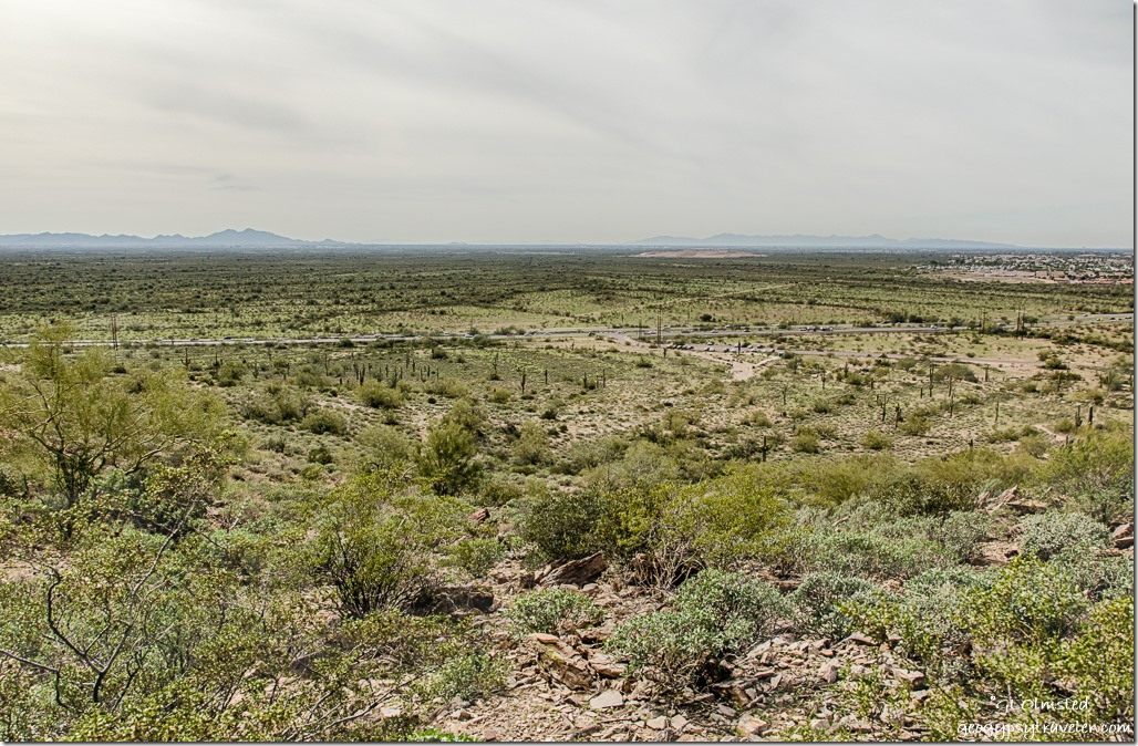 View West Palo Verde trail Silly Mountain Park Apache Junction Arizona