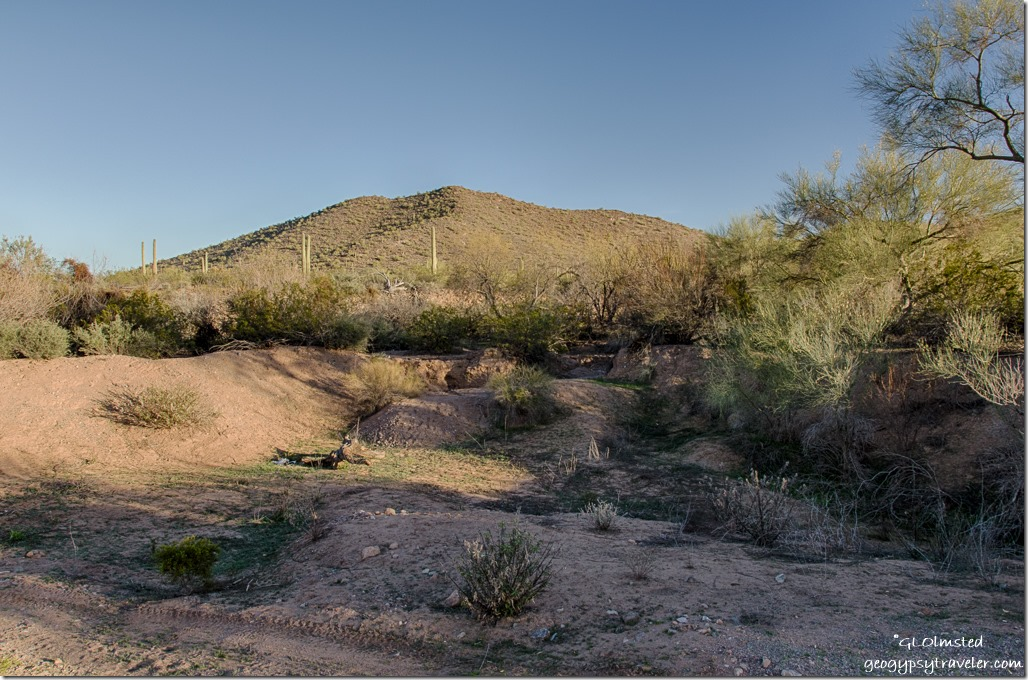 Wash Darby Well Road Ajo BLM Arizona