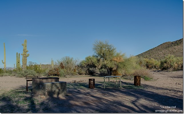 Developed camp Darby Well Road Ajo BLM Arizona