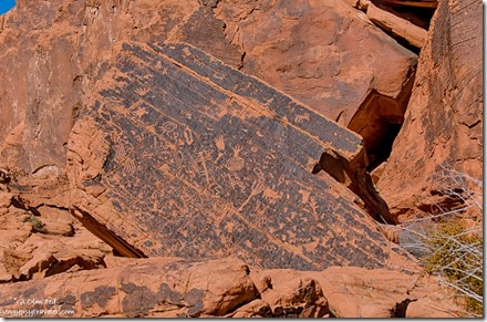 Petroglyphs by Atalatal Rock Valley of Fire State Park Nevada