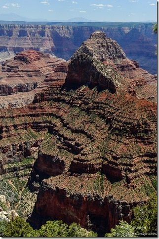 Canyon view Walhalla Plateau North Rim Grand Canyon National Park Arizona