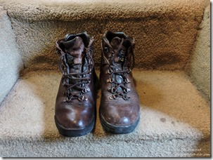 1 polished boot North Rim Grand Canyon National Park Arizona