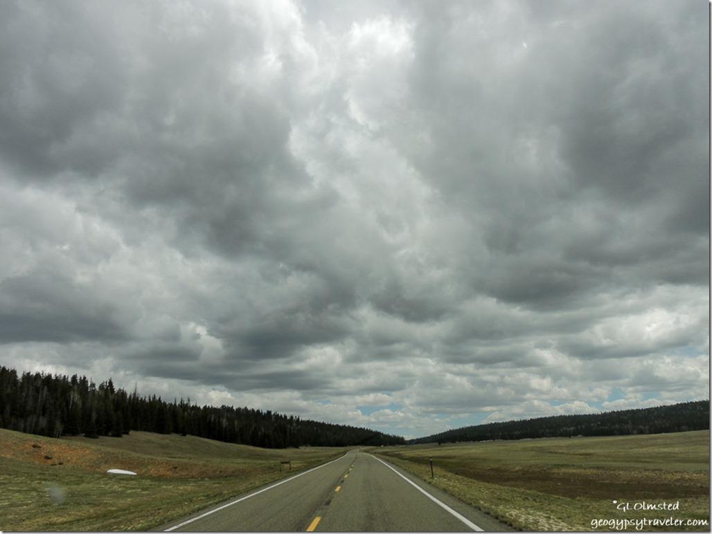 Stormy sky meadows SR67 South Kaibab National Forest Arizona
