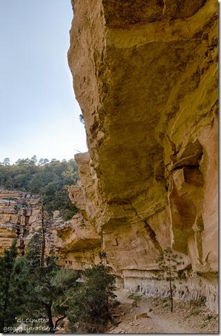 Cliff Spring trail North Rim Grand Canyon National Park Arizona