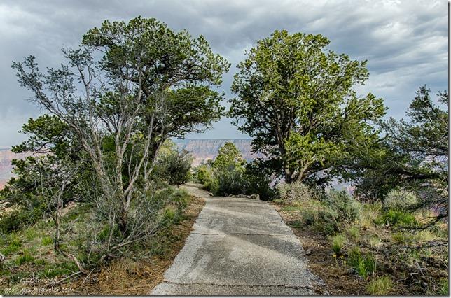 trail Walhalla overlook North Rim Grand Canyon National Park Arizona