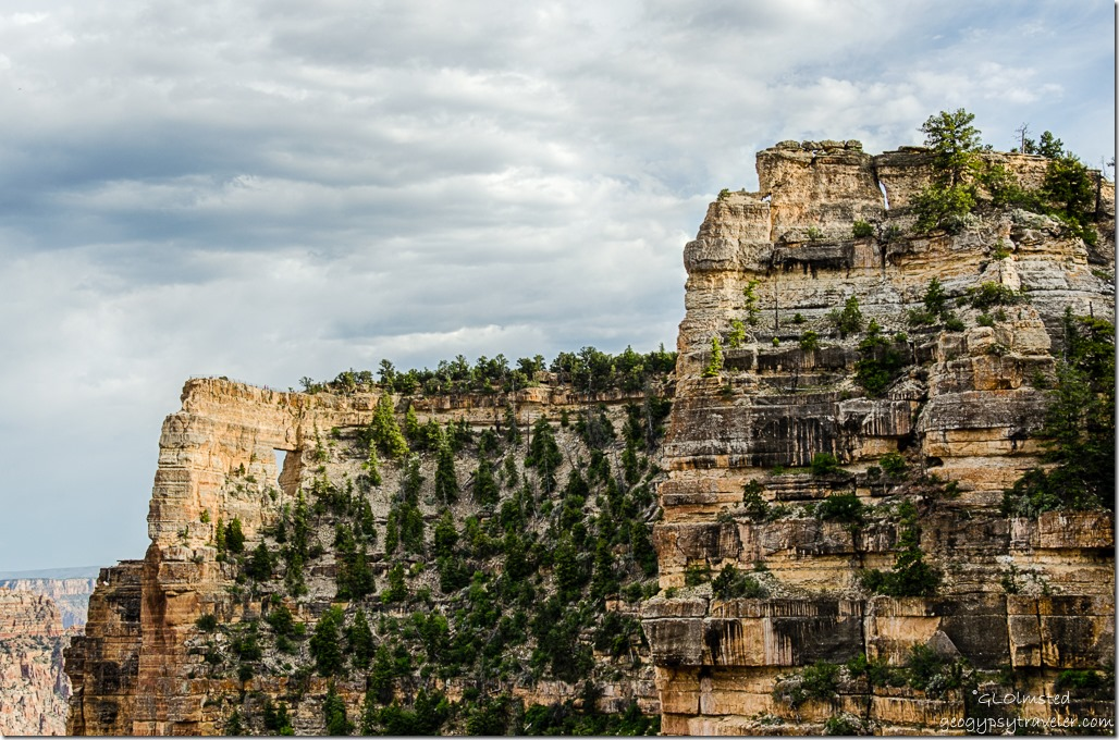 Angels Window from Cliff Spring parking North Rim Grand Canyon National Park Arizona