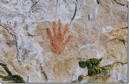 hand print Cliff Spring trail North Rim Grand Canyon National Park Arizona