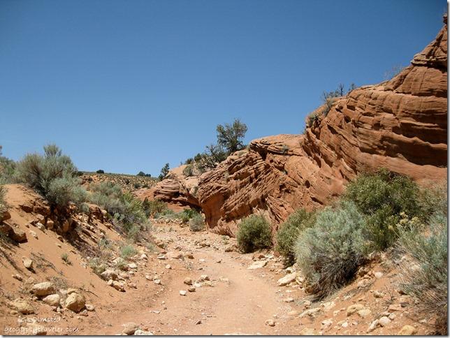 dry wash Wire Pass trail Utah