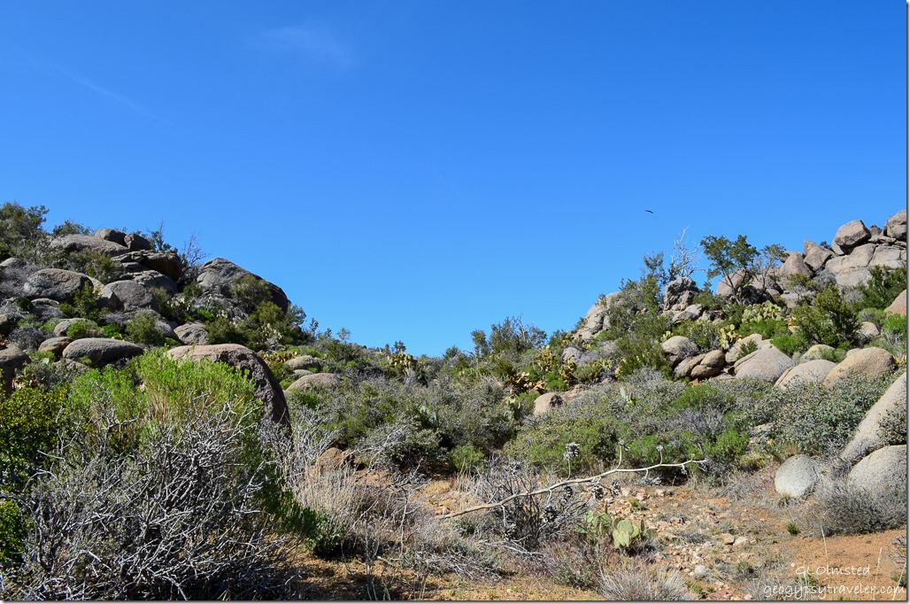 Weaver Mountains Yarnell Arizona