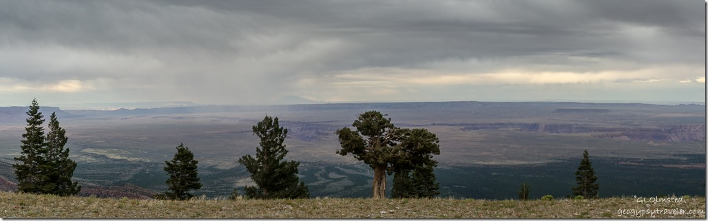 cloudy stormy view from Marble View Kaibab National Forest Arizona