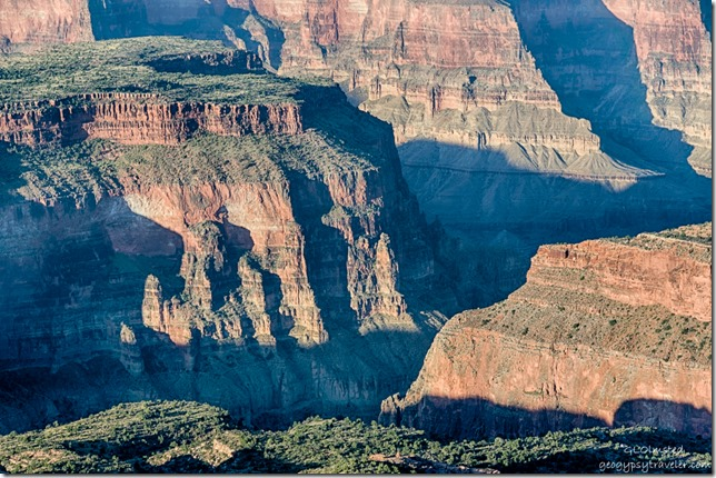light & shadow down in canyon from Crazy Jug Point Kaibab National Forest Arizona